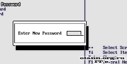 CMOS Password